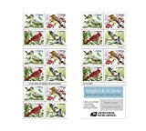 Songbirds in Snow Forever First Class Postage Stamps brighten cold winter days 1 sheet of 20 Stamps