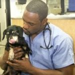 Hot Vet – When to Bring Your Pet to the Vet